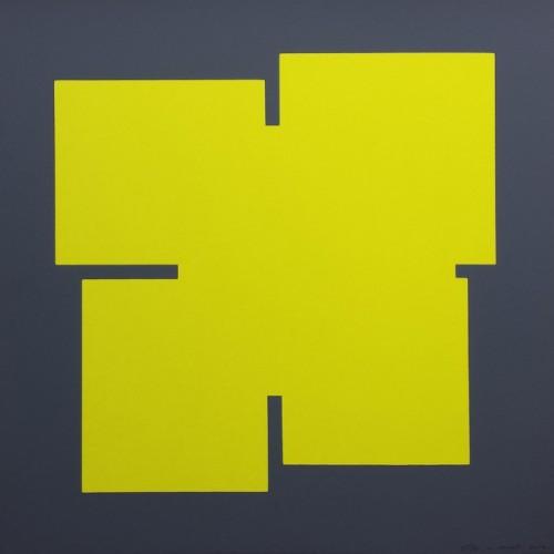 Pistachio on dark gray - 2013, Sérigraphie originale sur papier 37,5 x 37,5 cm 50 exemplaires