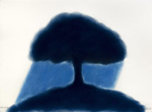 Blue Shade - 2019, pastel sur papier,56 x 76 cm